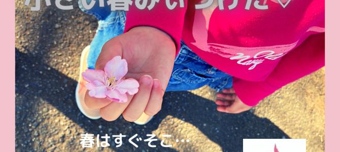 もうすぐ春ですよ〜〜〜
